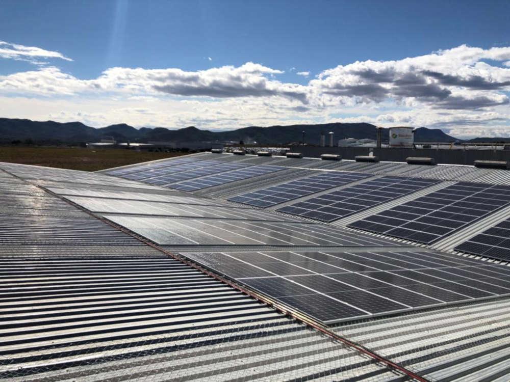 autoconsumo industrial fotovoltaico CODIAGRO